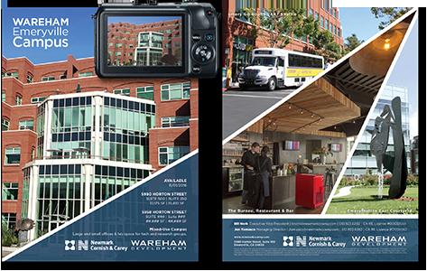 Class A Building Brochure (Photos, design, & printing)